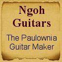 Ngoh guitars